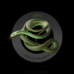Happy Year-of-the-Snake! (marianna a.) Tags: pet cute mine long florida rip domestic twiggy slither treesnake 2013 roughgreen mariannaarmata