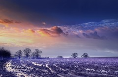 Cold as ice (Eric Goncalves) Tags: winter cold colour ice colors landscape countryside frost gloucestershire nikond7000 lidney galleryoffantasticshots rememberthatmomentlevel4 rememberthatmomentlevel1 rememberthatmomentlevel2 rememberthatmomentlevel3 rememberthatmomentlevel5