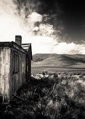 Side house (The Paul Miller) Tags: sky blackandwhite mountains abandoned blancoynegro oregon geese desert homestead shack sagebrush abandonado