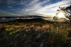 Sun-kissed Mauna Kea (Warm Bread) Tags: sunset cloud sun mountain sunrise landscape volcano hawaii nikon sigma wideangle bigisland mauna 1020 maunakea loa d5100