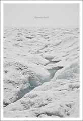 Froid Glaciaire  /  Glacier Cold ! (Gvomit) Tags: winter snow canada cold west ice nature water canon landscape rockies eau ngc naturallight glacier alberta neige paysage froid rocheuses calme glace columbiaicefield ouest 50d glaciercolumbia gvomit gvophoto