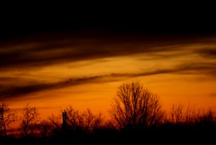 Sunset (LaLa83) Tags: trees winter sunset ohio sky orange clouds evening dusk sony january alpha a230 fairfieldcounty 2013 ruralohio stoutsville ohiofoothills
