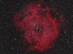 Rosette (whitenerj) Tags: nebula rosette Astrometrydotnet:status=solved Astrometrydotnet:version=14400 Astrometrydotnet:id=alpha20130135475995