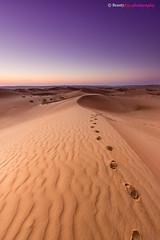 Oman - Down at Wahiba Sands (Beauty Eye) Tags: nightphotography night photoshop sunrise canon rebel exposure outdoor dunes down scene sands tamron oman lightroom t3i cameraraw ultrawideangle 600d nauticaltwilight beautyeye 1024mm astronomicaltwilight bidiyah  canon600d  tamronspaf1024mmf3545diiild rebelt3i kissx5 sunrisedown canon600deos  omanbidiyah omanomancountry