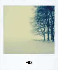 "#DailyPolaroid of 16-1-13 #110 • <a style=""font-size:0.8em;"" href=""http://www.flickr.com/photos/47939785@N05/8396362688/"" target=""_blank"">View on Flickr</a>"