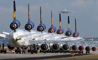 8 X MD-11's in one picture @ FRA D-ALCL, D-ALCA, D-ALCB, D-ALCD, D-ALCS, D-ALCF, D-ALCP and D-ALCI is at final. [explore]