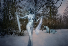 Lady Ice (.Sophie C.) Tags: winter snow texture ice photoshop frost hiver neige froid glace licorne pareeerica ladyice