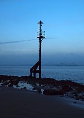 Low Tide (.annajane) Tags: uk blue england sky seagulls bird beach silhouette night dusk gulls mersey wirral newbrighton merseyside rivermersey beachmarker tidemarker liverpoolbay