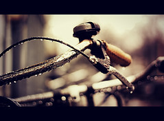 Let it drip... (Vicktor Abrahams) Tags: street city light holland rain bike canon walking 50mm iso100 flickr dof bokeh walk netherland raindrops handlebar cinematographer cinematic 1400 vicktor 600d bokehlicious 18 100bicycles 100bicyclesproject