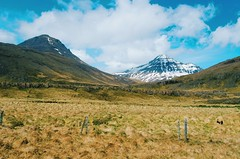 Not all those who wander are lost (Lucas Marcomini) Tags: landscape nature travel lucasmarcomini iceland adventure wanderlust traveling outdoors mountain cabin snow waterfall icelandic rocks live folk authentic campvibes chill roadtrip trip wander wandering wonder awe natural world