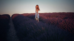 34 - off the land (escape.myself) Tags: lavender lavanda provence france fields freedom redhead ginger dress hm