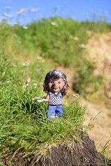 russian-photographer.ru       (DaryaM) Tags: ussr gdr vintage dollcollection doll dollgerman hedgehog nature summer russia africanamerican ddr darkskinned darkskinneddoll rarity          urchin toy funny joke fun dollcollector