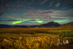 Northern Lights, Iceland. (thesharkhunter) Tags: auroraborealis northernlights landscape iceland nightphotography nightlights sonya7rii gregbottle