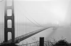 Old school picture: The Golden Gate, San Francisco (annelaurem) Tags: zeisssuperikontac glodengatebridge sanfrancisco california usa bridge fog fp4 ilford 125 iso analog film 1937