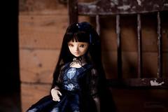 (koroa) Tags: bjd amy bluefairy bf tf doll feeriedoll feeriedollatelier