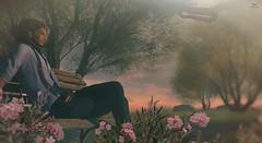 @Winters Wind, while shooting (Skip Staheli (Clientlist closed)) Tags: skipstaheli secondlife sl explore travel winterswind inworld sim flowers relaxing photographer virtualworld avatar