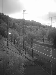 Out the Window in Infrared (sjrankin) Tags: 24september2016 edited ir infrared yubari hokkaido japan road trees view poles wires reflection