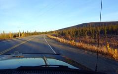 Early morning eye test . . . (JLS Photography - Alaska) Tags: alaska alaskalandscape road highway glennhighway moose morninglight morning jlsphotographyalaska travel outdoor