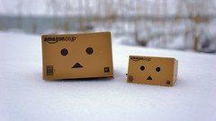 Danboards in the powder snow (nines_graphics) Tags: winter snowscape danboard nex7