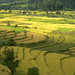 Bhutan - Small Farm Development and Irrigation Rehabilitation Project - Oct 1987