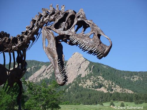 Photo - Jurassic Park