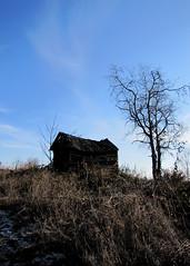 két öreg / two old men (debreczeniemoke) Tags: winter meadow bluesky shanty fruittree tél twooldmen rét viskó kékég gyümölcsfa canonpowershotsx20is kétöreg