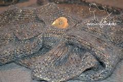 completo_lame_7 (pizzatomariacristina) Tags: lana knitting handmade cloche maglia ferri mohai berretto fattoamano lam