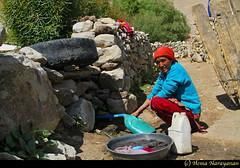 Wash Room in Ladakh (Hema Narayanan) Tags: ngc leh ladakh indianwoman khardung khardunglapass peopleofindia khardungvillage peopleofladakh highaltitudesettlement lifeinladakh