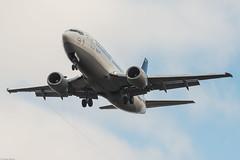 Lufthansa Boeing 737-330 D-ABEW Detmold (824013) (Thomas Becker) Tags: lufthansa dlh boeing b737 737 330 300 733 dabew detmold star alliance cn 27905 ln 2705 090395 230395 lh325 venice vce fraport flughafen airport aeroport aeropuerto aeroporto fra eddf frankfurt plane spotting aircraft airplane avion aeroplano aereo 飞机 vliegtuig aviao аэроплан samolot flugzeug luftfahrzeug germany deutschland hessen rheinmain nikon d800 nikkor 70200 vrii f28 fx raw aoka ak4nii gps aviationphoto 130102 arrival geotagged geo:lat=50039523 geo:lon=8596970 aerotagged aero:airline=dlh aero:man=boeing aero:model=737 aero:series=300 aero:tail=dabew aero:airport=eddf