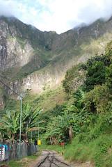 Camino a Aguas Calientes, Peru - 2010 (D*C) Tags: voyage trip viaje peru machu del america train landscape selva rail paisaje vert pichu jungle sur paysage aguas verticale pérou calientes végétation