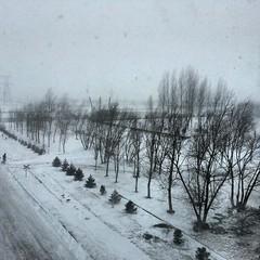 Станцию заметает. Плюсовая температура и снег.