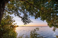 The Oarsman (Christoph Lindemann) Tags: boot see boat meer wasser sonnenuntergang sundown baum sundowner the oarsman steinhude ruderboot wilhelmstein ruderer steinhudermeer