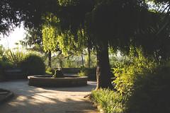 quietness- (Immacolata Melillo Photography) Tags: santagata de goti benevento italy italia south campania nature public garden tree green fountain