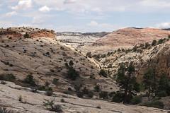 Folded, Heaved and Carved (Jeff Mitton) Tags: grandstaircaseoftheescalantenationalmonument landscape sandstone canyon utah escalante earthnaturelife wondersofnature