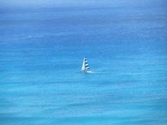 IMG_2931 (dennis_p) Tags: honolulu hawaii hiltonwaikikibeach waikikibeach waikiki