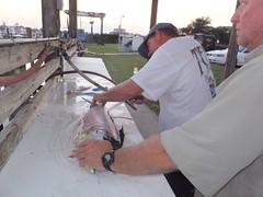 16-08-28-164 (Bill Billings) Tags: branchoffice strozier deepseafishing