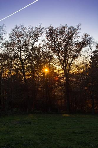 Reichshof - sunset 8
