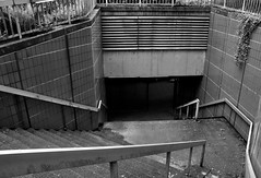 Es geht abwrts... (Lichtabfall) Tags: stairs treppe lostplace urbex urbanexploration einfarbig blackwhite blackandwhite hamburg monochrome schwarzweiss downstairs gelnder handrail