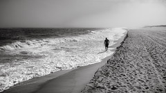 Beach Walker (David F. Panno) Tags: sony dscrx100 28100mmf1849 easthampton newyork usa beachwalker