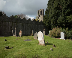 Malahide Abbey (Peter E. Lee) Tags: grass spring ruins ireland roi abbey gravestone republicofireland graveyard 2016 ire eire malahide dublin ie