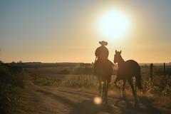 (emiliokuffer) Tags: nikon nikond610 sunset atardecer horizon horizonte campo countryside
