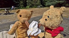 Virginia Water 17 August 2016 063 (paul_appleyard) Tags: savill garden august 2016 bears teddies teddy bear pooh ice cream 99 cone virginia water valley gardens lumia 950