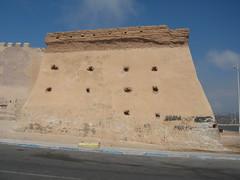 (Grigory Gusev) Tags: morocco  agadir