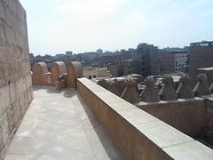 SAM_7378 (Nanny Muhsen Abdelsalam) Tags: