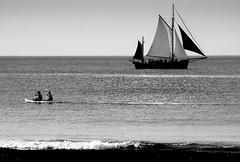 Differents paths (alain01789) Tags: monochrome bw blackandwhite noiretblanc mer sea etretat normandie bateaux boats plage beach seascape