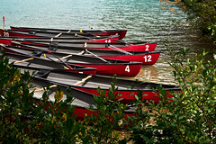 Travel Journal #1 Part 5 (rosarioarbin) Tags: photo photography photos nature canoe canoes boat boating shore lake outdoor numbers rental trees shrub water