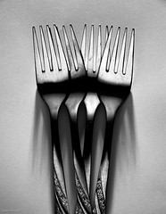 Forks and shadows (Daniel Arnaldi) Tags: black highcontrast reflection stilllife shadows shinny white cutlery fork metal photography studio danielarnaldiphotographer