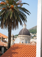 Dubrovnik, Croatia, from inside city walls (rossendale2016) Tags: earthenware pottery ceramic grates fire smoke chimneys television chimney aerial terrestrial side tv satellite tiled coloured earthen red climbing exterior ladder date roof church palm walls city inside dubrovnik