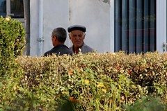 Chatting Behind Parcul Nevers on Strada Decebal - Curtea de Arge, Jud. Arge, Romania (Wayne W G) Tags: man men hat europe candid hats streetphotography romania beret easterneurope berets arges curteadearge geo:country=romania arge
