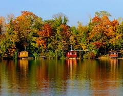 Fischerherbst (JulienSFX) Tags: red lake reflection green rot fall nature yellow automne see fishing herbst natur gelb otoo grn spiegelbild fischer herbstfarben